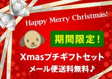 クリスマスプチギフトセット