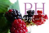 PHサポート